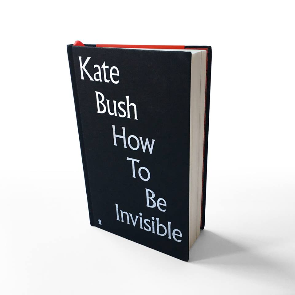 """""""How to be invisible"""": recueil des textes des chansons 47575998_10157015572650680_2159867022261878784_n"""