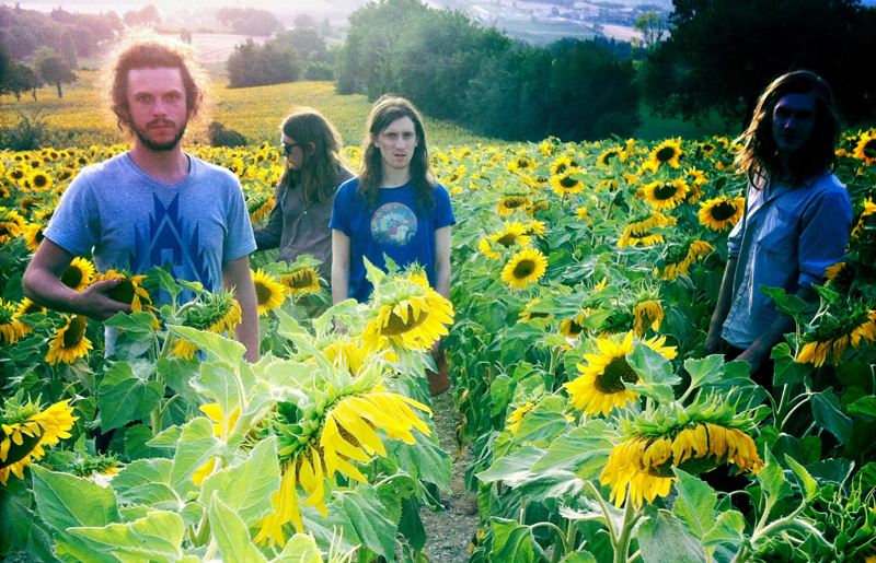 Syd-Arthur-Promo-2012-Sunflowers-Web