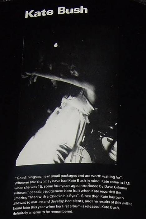 KT Bush Band 1977