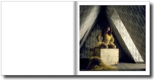 Lionheart attic shoot