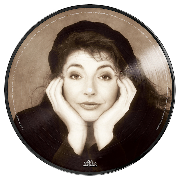 pic disc back small